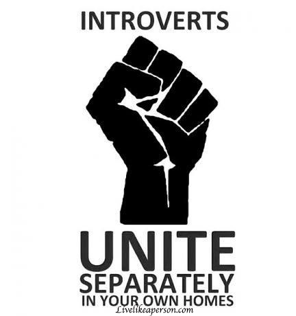 Funny-memes-introverts-unite